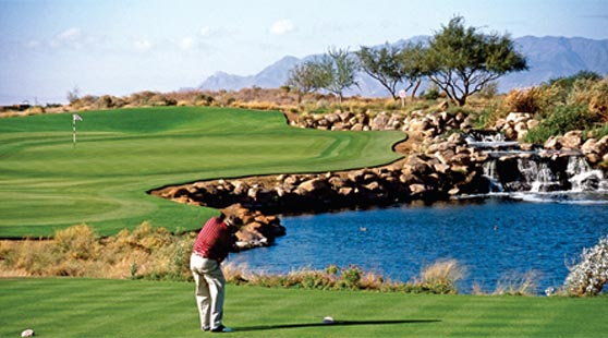 Sheraton Wild Horse AZ Golf