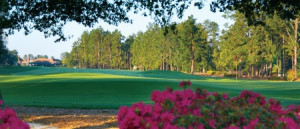 Pinehurst golf vacation 35.1954° N, 79.4695° W