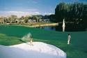 saddlebrook golf vacation 27.9506° N, 82.4572° W