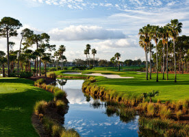 palm golf packages